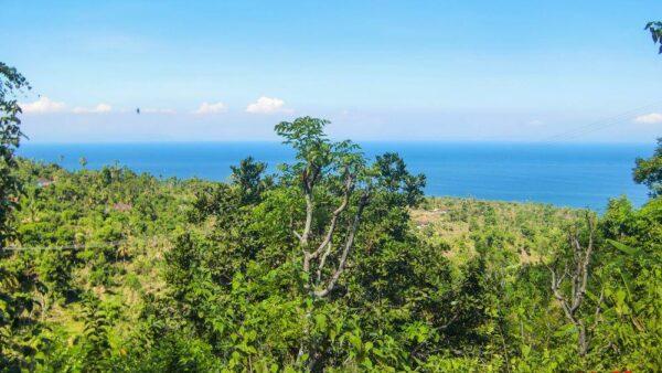 Panorama dari atas bukit di Amed, Pepohonan hijau langsung menuju ke Laut.