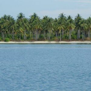 Salah satu pulau di gugusan kepualauan karimun sangat bagus untuk lokasi snorkling