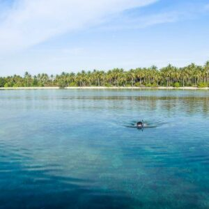 Lokasi snorkeling kepualauan karimun
