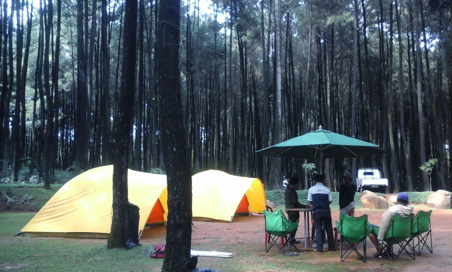 camping ground hutan pinus gunung pancar